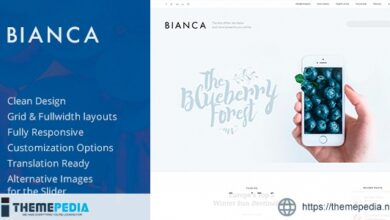 Bianca — Clean Blog WordPress Theme [Updated Version]