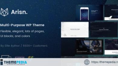 Arisn – Creative Multi-Purpose – App WordPress Theme [Updated Version]