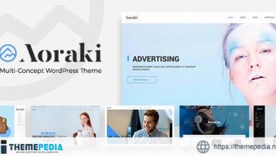 Aoraki – Multi-Concept Business WordPress Theme [Free download]