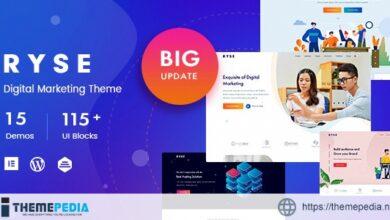 Ryse – SEO & Digital Marketing Theme [nulled]
