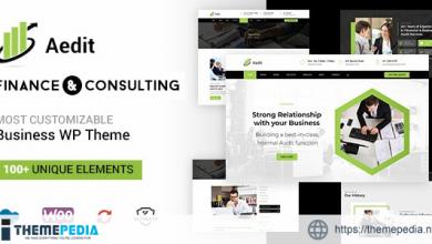 Aedit – Consultancy WordPress [Free download]