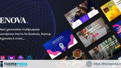 Enova – Multipurpose Business WordPress Theme [Free download]
