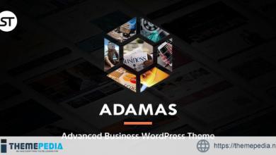 Adamas – Advanced Business WordPress Theme [Updated Version]
