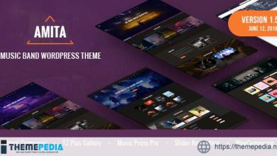 AMITA – Music Band WordPress Theme [Free download]