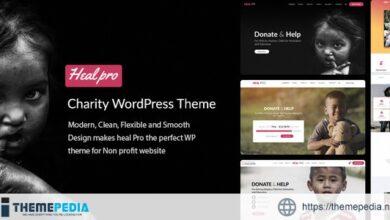Heal Pro- Multipurpose Charity WordPress Theme [Free download]