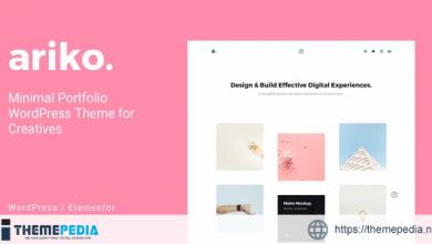 Ariko – Minimal Portfolio WordPress Theme for Creatives [nulled]