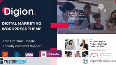 Digion – Online Digital Marketing WordPress Theme [Free download]