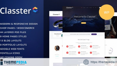 Classter – A Colorful Multi-Purpose WordPress Theme [Free download]