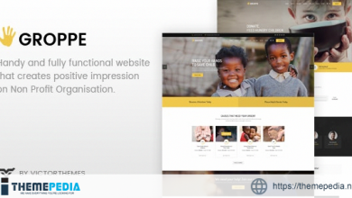 Groppe – Nonprofit WordPress Theme [Free download]