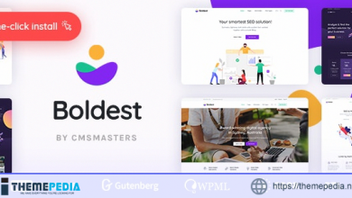 Boldest – Consulting and Marketing Agency Theme [Free download]