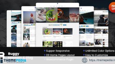 Buggy – Magazine & Blog WordPress Themes [Free download]
