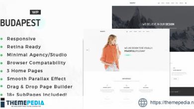 Budapest – Minimal Multi-Purpose Portfolio WordPress Theme [Free download]