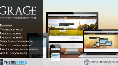 Grace – Religion WordPress Theme [Free download]