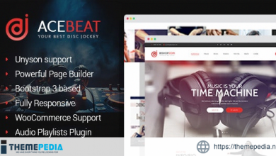 AceBeat – DJ Personal Page WordPress Theme [Free download]