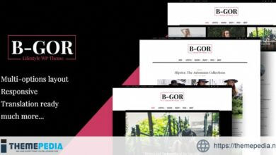 Bgor – A Lifestyle WordPress Theme [Free download]