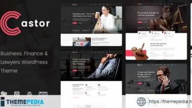 Castor – Business Consulting WordPress Theme [Updated Version]