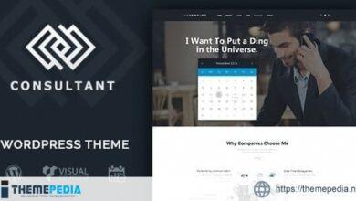 Consultant – WordPress Theme [Free download]