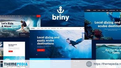Briny – Scuba Diving School & Water Sports WordPress Theme + RTL [Free download]