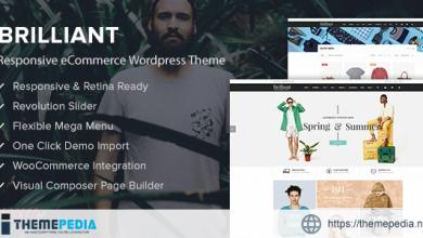 Brilliant – Responsive eCommerce WordPress Theme [Free download]