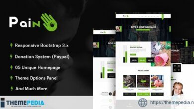 Pain – Charity & Nonprofit WordPress Theme [Updated Version]