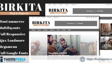 Birkita – WordPress Blog and Magazine Theme [Free download]