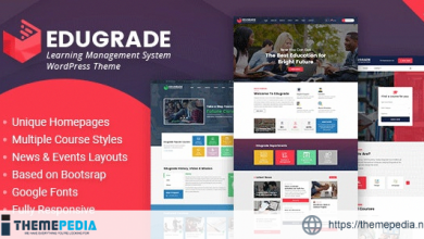 Edugrade – Education WordPress Theme [Free download]
