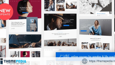DotLife – Coach Online Courses WordPress [Free download]