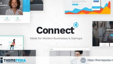Connect – Software Company Theme [nulled]