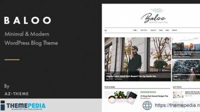 Baloo – Minimal & Modern Blog WordPress Theme [nulled]