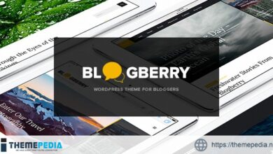 Blogberry WordPress Theme [Free download]