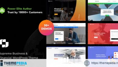 Businext – Business and Financial Institution WordPress Theme [Free download]
