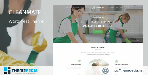 CleanMate – Cleaning Company Maid Gardening WordPress Theme [Free download]