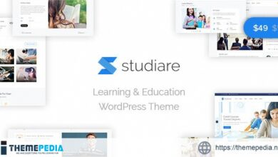 Studiare – Education WordPress Theme for Univeristy & Online Courses [Free download]