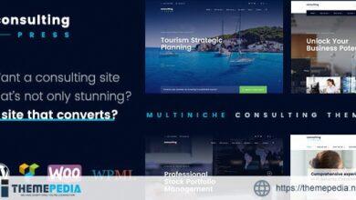 ConsultingPress – Multi Niche Consulting WordPress Theme [Free download]