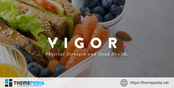 Vigor – A Responsive News Magazine Blog WordPress Theme [Latest Version]