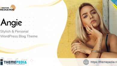 Angie – a Multi-Concept Blog Theme For WordPress [Free download]