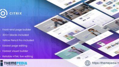 Citrix – Business WordPress Theme [Free download]