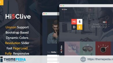 Hi5Clive – Digital Marketing Entrepreneur WordPress Theme [Free download]