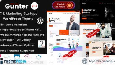 Gunter – IT & Marketing Startup WordPress Theme [Free download]