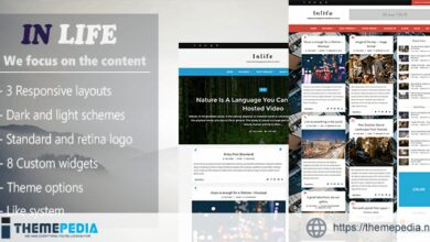 InLife – Simple & Flexible Blog-Magazine [Free download]