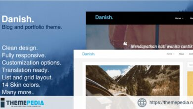 Danish – Blog and Portfolio WordPress Theme [Free download]