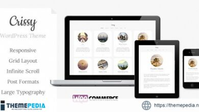 Crissy – Responsive WordPress Theme [Free download]