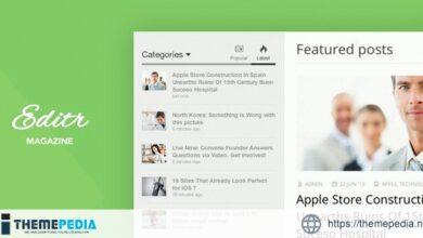 Editr – Blog-Magazine WordPress Theme [Updated Version]