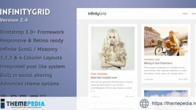 InfinityGrid – An infinite scrolling – personal blogging theme [nulled]