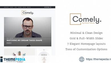 Comely – Responsive WordPress Blog Theme [Updated Version]