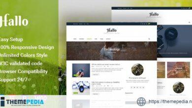 Hallo – Lifestyle A Responsive WordPress Blog Theme [Updated Version]