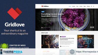 Gridlove – News Portal & Magazine WordPress Theme [Updated Version]