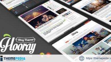 Hooray — Blog WordPress theme for Professional Writers [Free download]