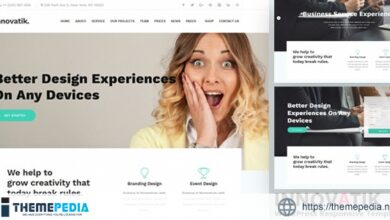 Innovatik – Business Consulting and Professional Services WordPress Theme [Free download]