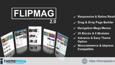 Flip Mag – Viral WordPress News Magazine-Blog Theme [Updated Version]